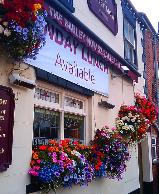 Flowers at the Barley Mow